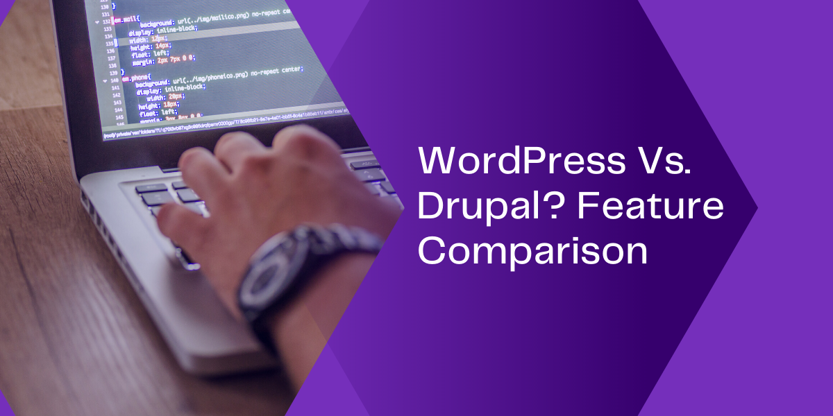 wordpress drupal