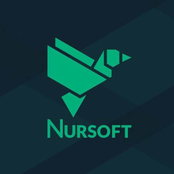 nursoft